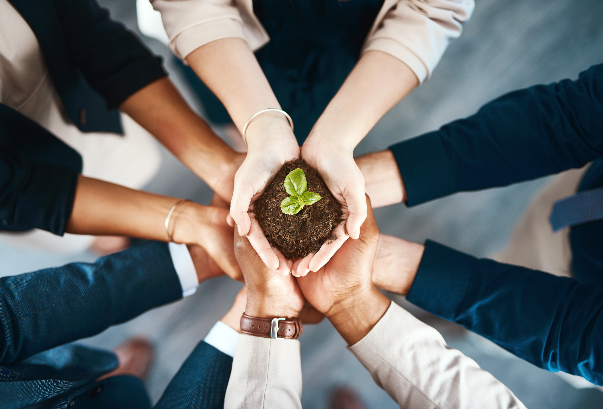 Benefits of Being Environmentally Friendly in Business